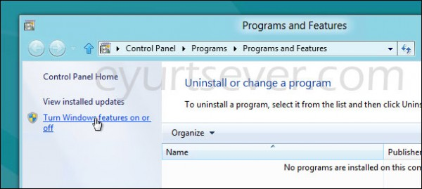 windows 8 ııs kurulumu